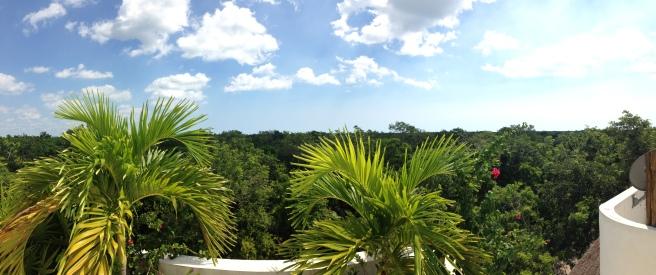 Tulum Office View
