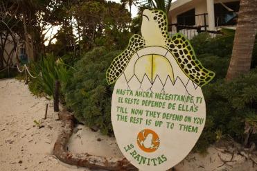 Tulum-Turtles-Sign